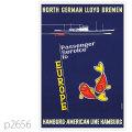 北ドイツロイド・シュワベンスタイン級客船のポスター | レプリカポストカード2656