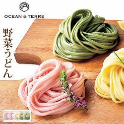 野菜うどんセットE