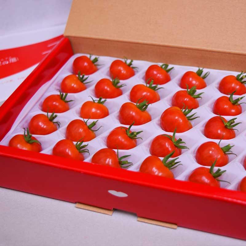 <販売期間:3月~7月、9月~12月>ミニトマト 天使の唇(贈答用)30粒入【送料込】