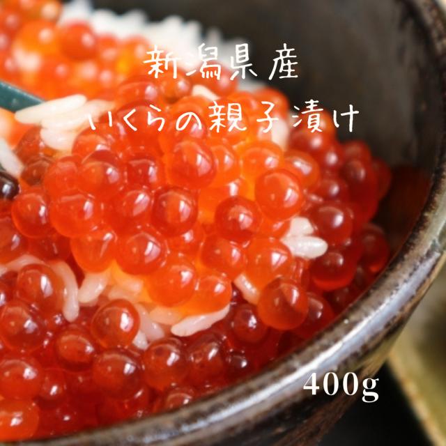 能水商店 新潟県産いくらの親子漬け(400g)