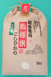 <令和元年産>越後菅谷殿様米1kg