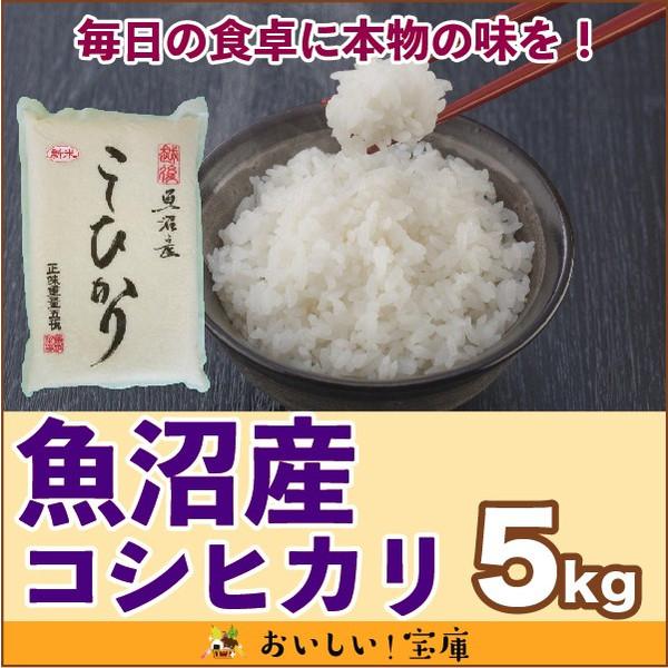新米<平成30年産>魚沼産コシヒカリ 5kg 【真空パック 品質長持ち!】