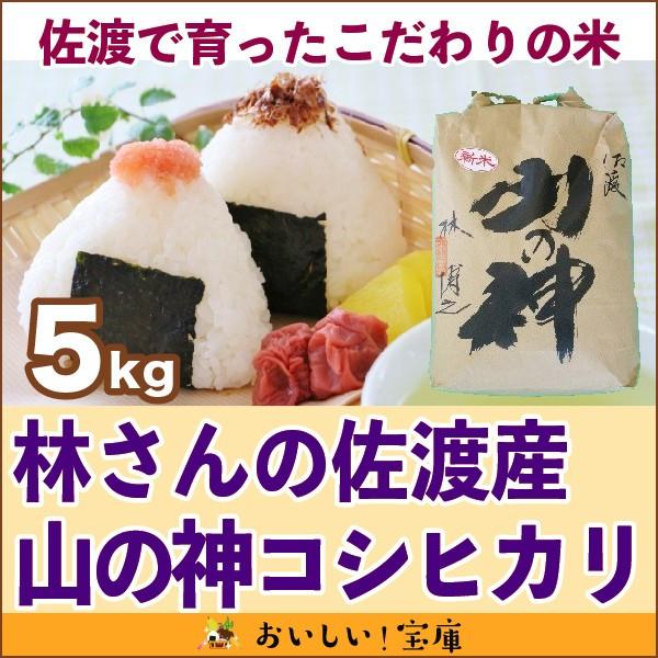 新米<平成30年産>林さんの佐渡産 山の神5kg