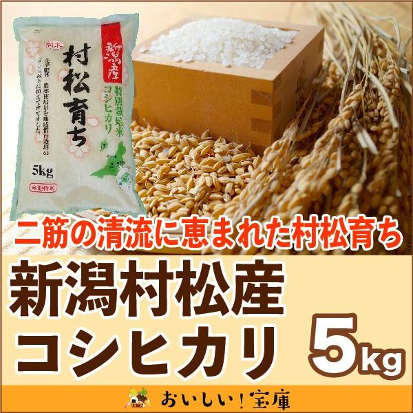 <令和元年産>村松産コシヒカリ 「村松育ち」5kg