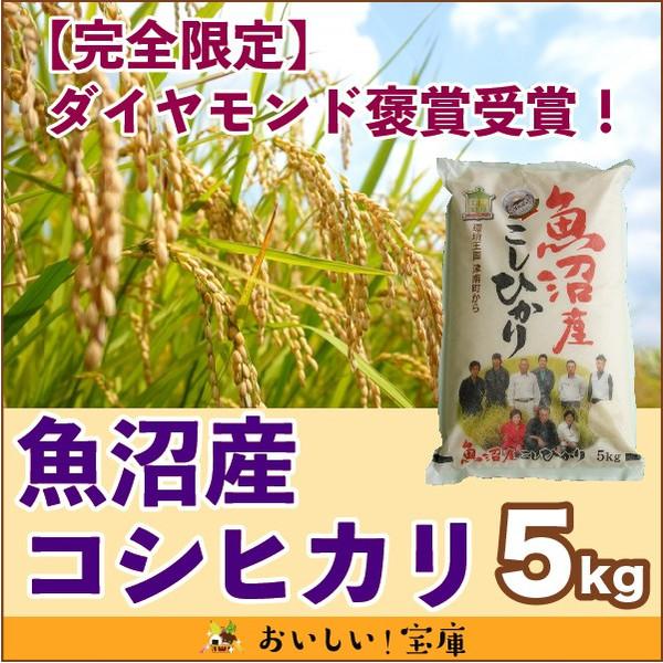 <令和元年産>【完全限定】ダイヤモンド褒賞受賞魚沼産コシヒカリ5kg