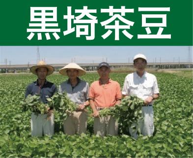 <発送期間:7/25~8/7>金巻 鈴木さんグループの黒埼茶豆1kg、1.5kg、2kg【送料込】【着日指定願います】
