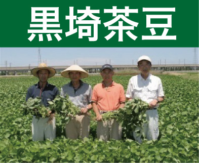 <発送期間:7/25~8/10>金巻 鈴木さんグループの黒埼茶豆1kg、1.5kg、2kg【送料込】【着日指定願います】