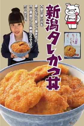 とんかつ三条の「新潟タレかつ丼」【送料込】