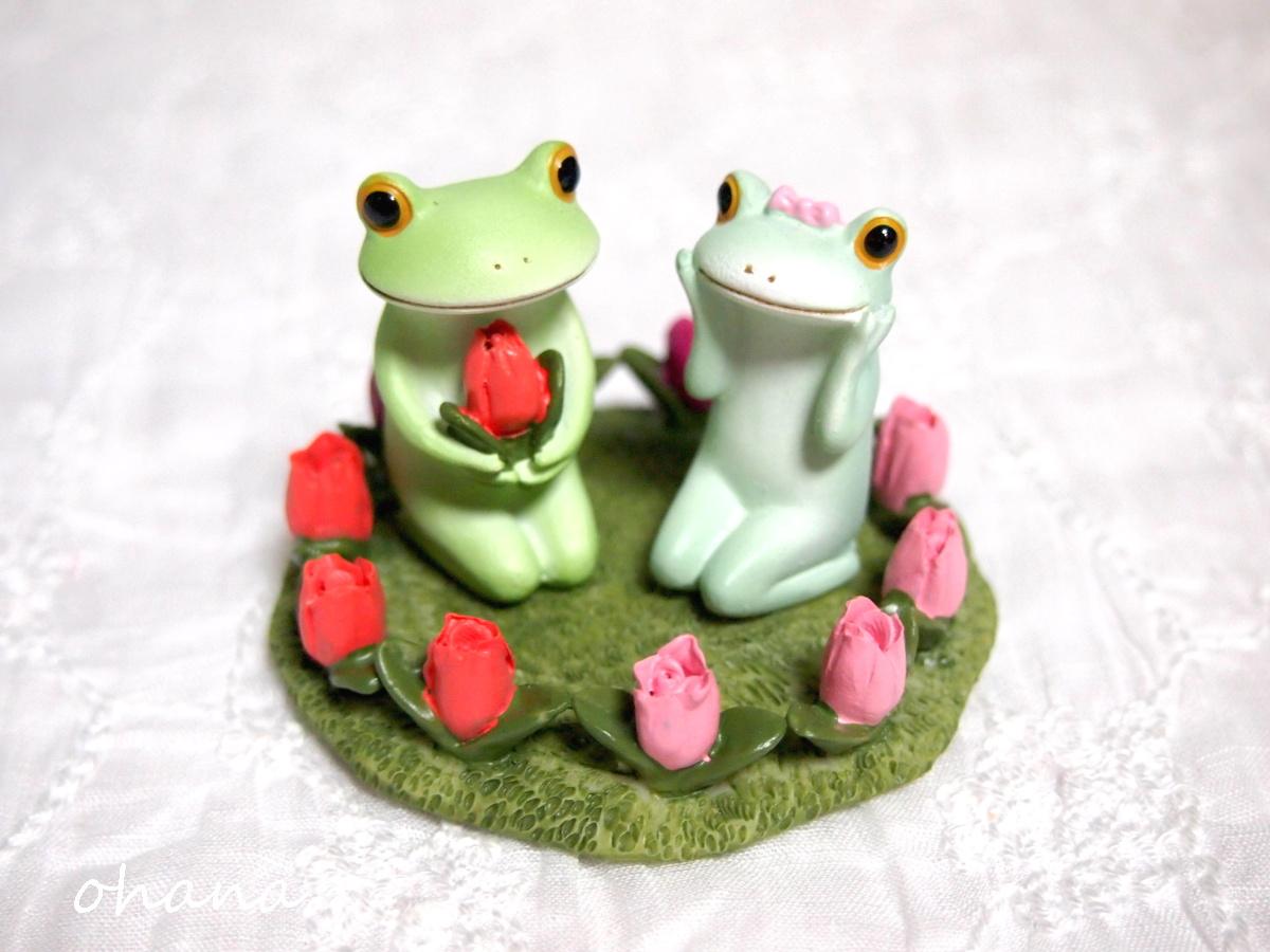 チューリップとカエル