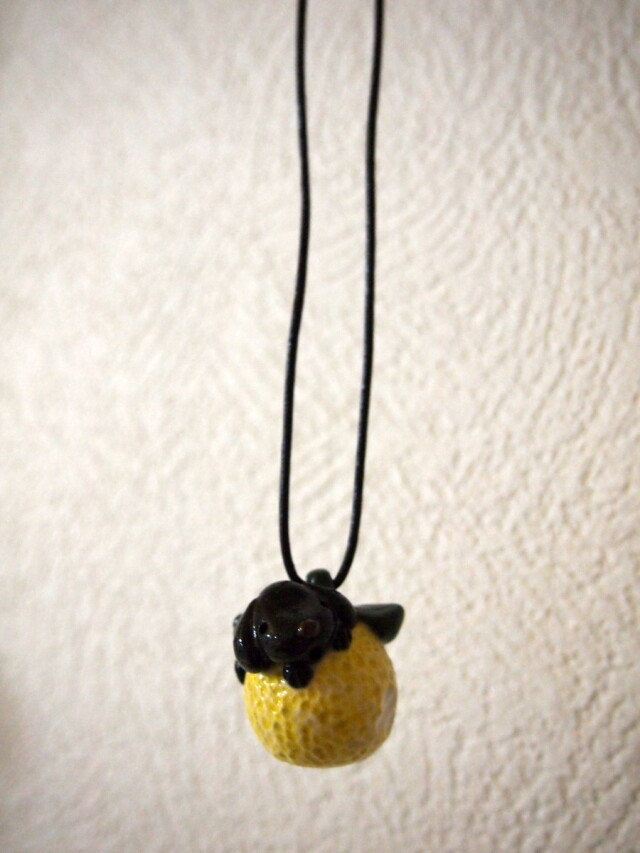 黒わんこと柚子