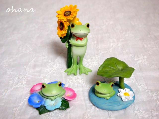 花とカエル