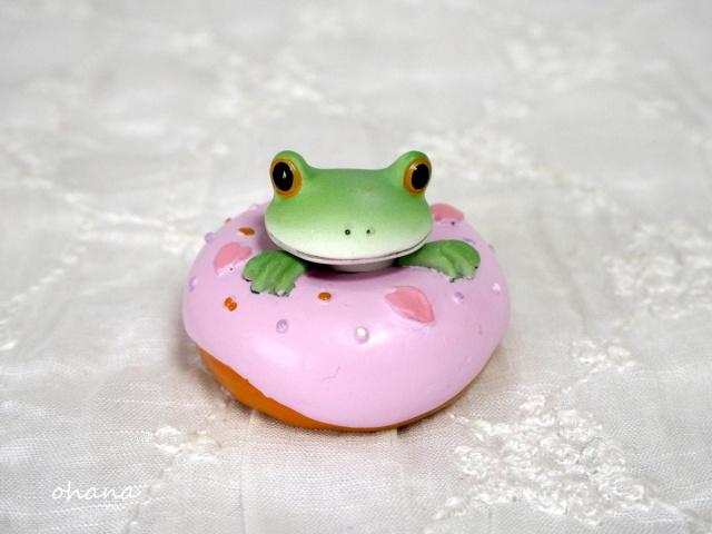 桜ドーナッツからカエル
