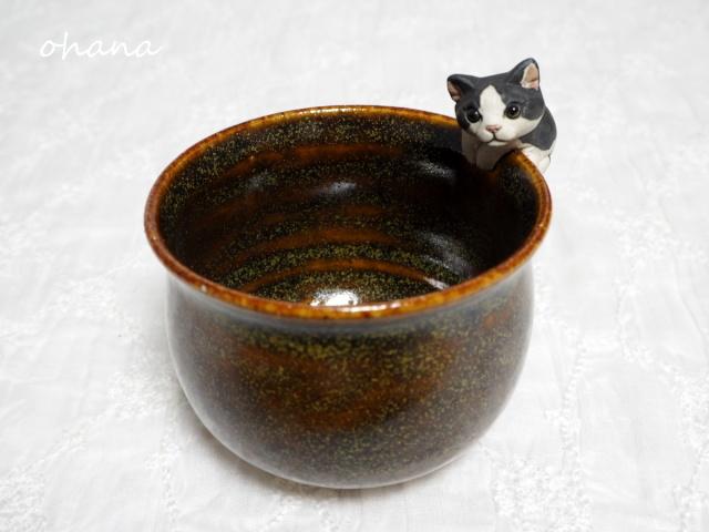 猫カップ・ハチワレ