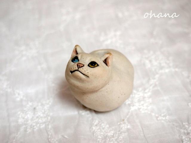 猫の一輪挿し