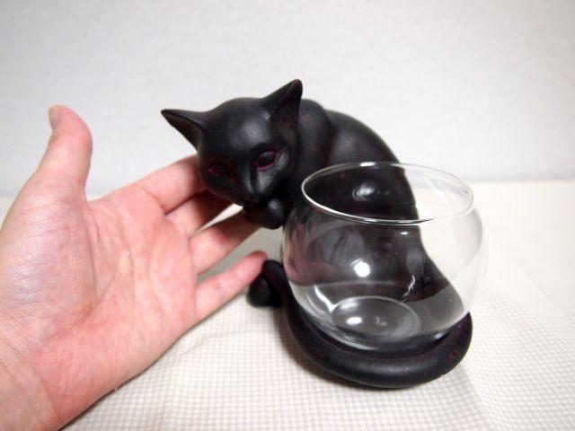 しっぽ巻き猫