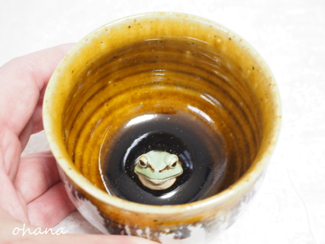 こんにちはカップ