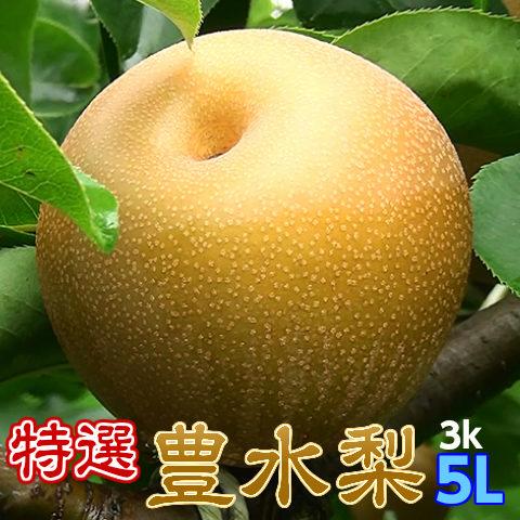 送料無料【特選完熟豊水梨5L以上3kg6玉以下】