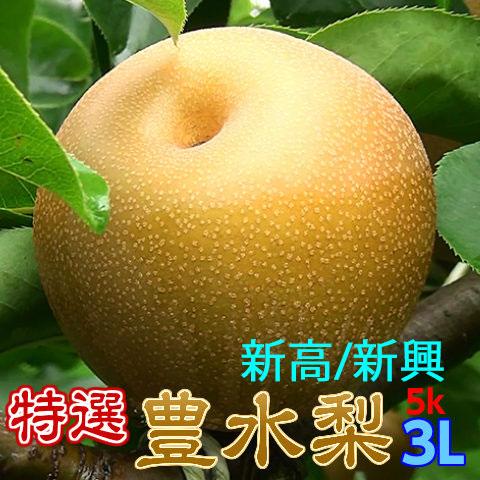 完熟梨L以上でお届け,豊水,新高,新興,収穫当日出荷
