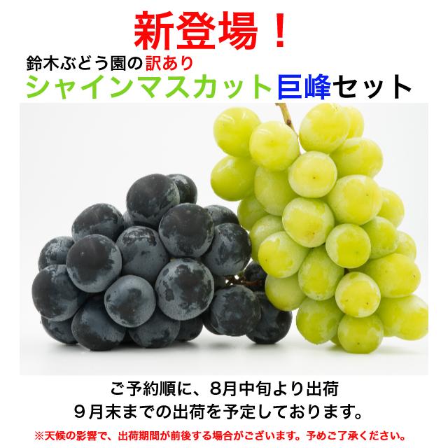 鈴木ぶどう園の訳ありシャインマスカット/巨峰セット1.5kg
