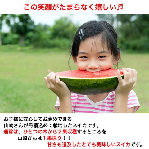 山崎さんちの中玉スイカ,虎太郎,L1玉.ミネラル栽培,茨城県特別栽培農産物