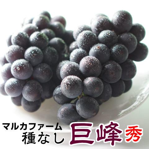 【送料無料】朝採り巨峰秀2kg