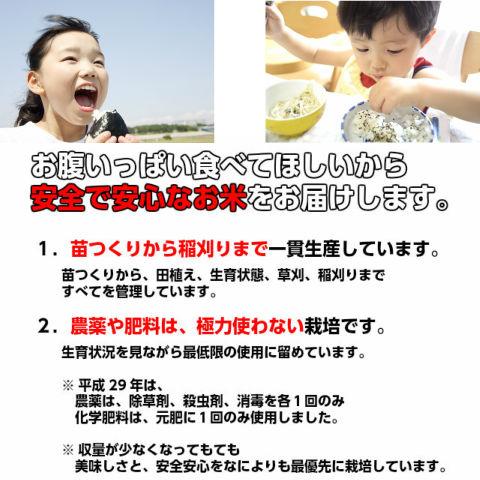 【天の川のめぐみ茨城コシヒカリ30kg玄米(精米27kg)】