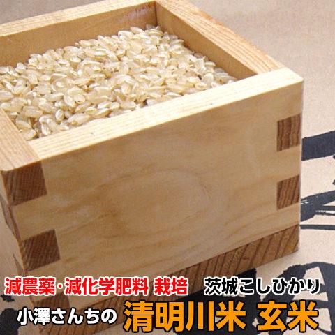 特別栽培コシヒカリ清明川