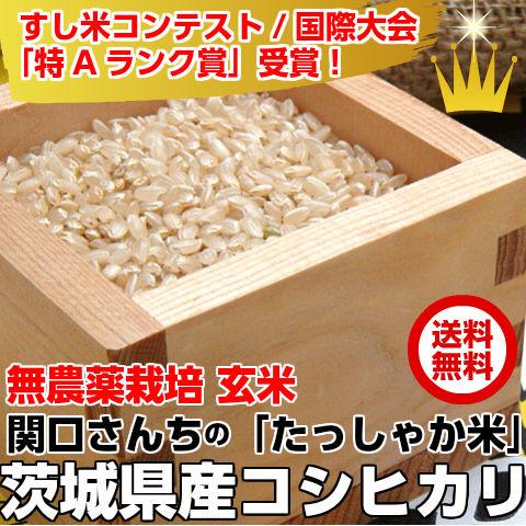 関口さんちの無農薬栽培コシヒカリ『たっしゃか米』コシヒカリ5k玄米