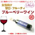 ブルーベリーワイン500ml