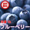 【送料無料】冷凍ブルーベリー500g×2茨城県小美玉やわらぎファームから直送