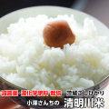 30年度産【特別栽培茨城コシヒカリ】小澤さんちの冷めてもおいしいお米