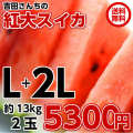 【紅大スイカ】甘いと大好評の生産者吉田さんに限定!シャリ感と甘さが特徴の大玉スイカ