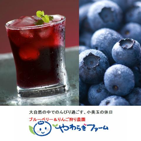 無着色・無香料『やわらぎ果実』720ml×1本果汁50%ブルーベリー飲料