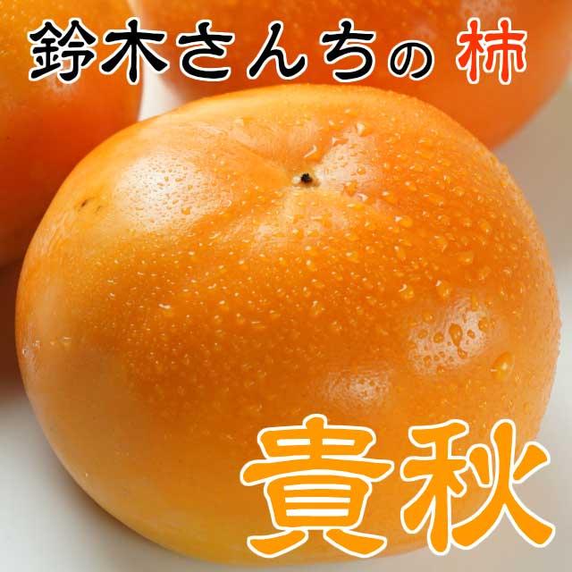 鈴木さんちの甘くてジューシーで後味スッキリ!柿「貴秋」約4k4k2L以上10〜14玉