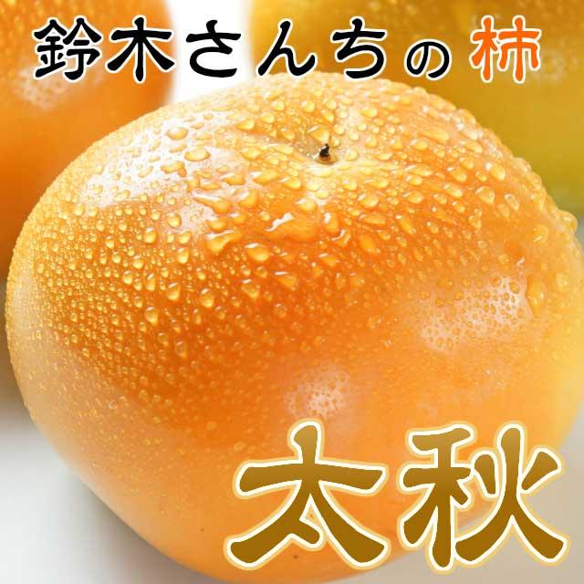 鈴木さんちのとりこになる美味しい柿「太秋」約4k3L以上10~12玉