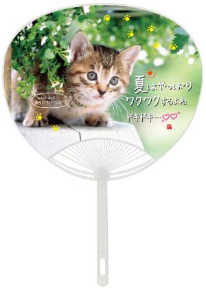 名入れに最適なうちわ!No.109 ポリうちわ(平柄) 猫