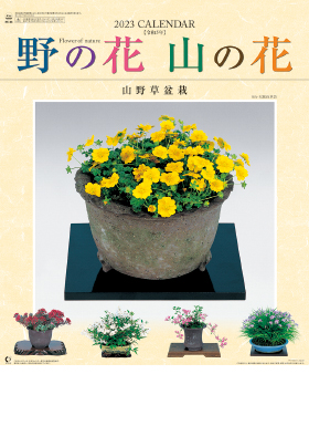 名入れカレンダー2022年 『NK-46 野の花・山の花(山野草盆栽集)』