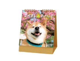 名入れ卓上カレンダー2022年 『NK-529 柴犬まるとおさんぽ』