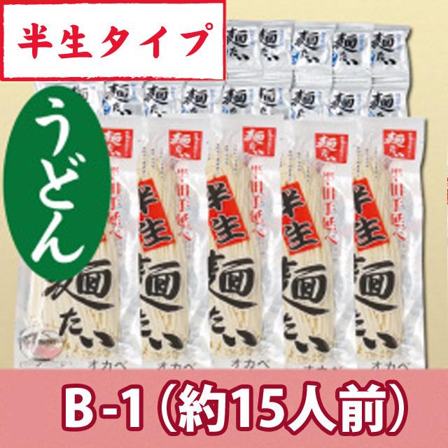半生うどん5袋15人前+麺つゆ【B-1】
