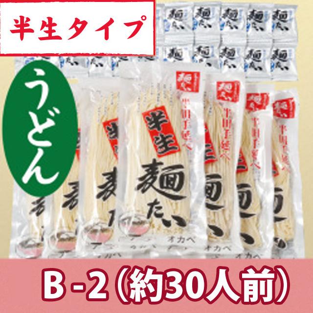半生うどん10袋+麺つゆ【B-2】