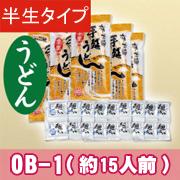 半生うどん5袋15人前+麺つゆ【OB-1】