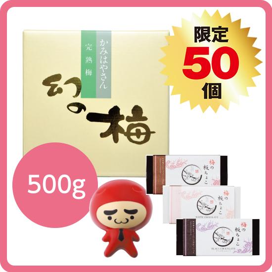 【送料無料】バレンタインセット2(お好きな梅干500g)
