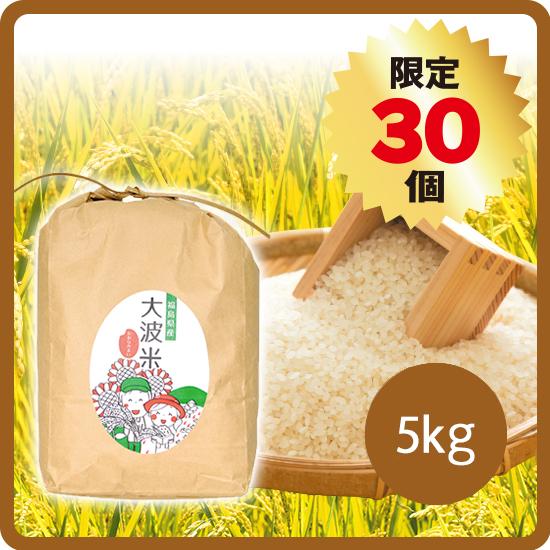 大波米(2020年産)5kg ※白米/玄米選択可