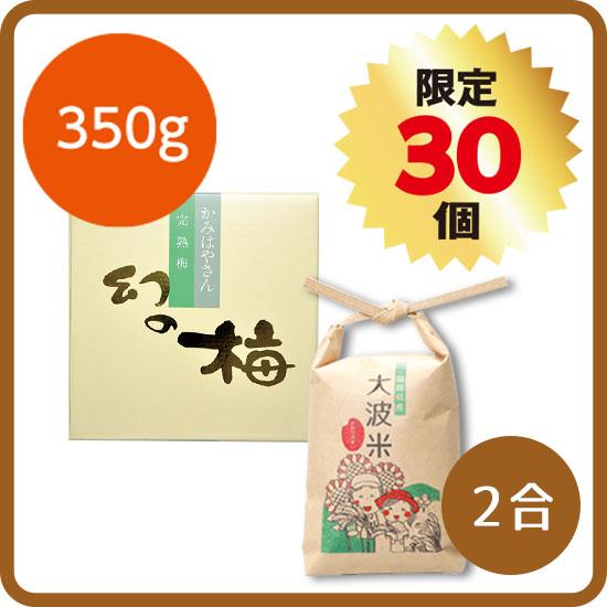 【送料無料・予約商品】新米セット<1>(大波米2合+幻の梅350g) ※12月お届け