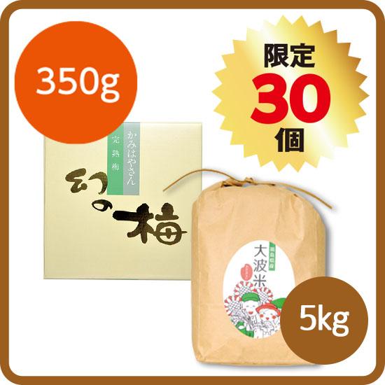 【送料無料・予約商品】新米セット<2>(大波米5kg+幻の梅350g) ※12月お届け