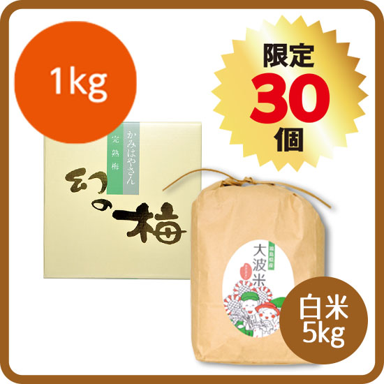 【送料無料・予約商品】新米セット<3>(大波米:白米5kg+お好きな梅干 1kg) ※12月お届け