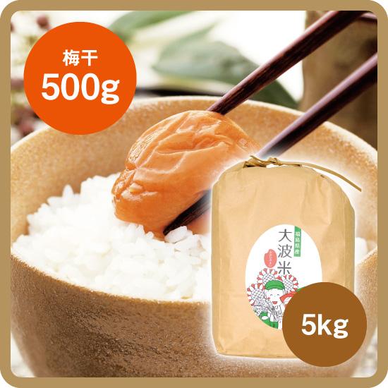 【送料無料・予約商品】大波米セット(大波米[新米]5kg+お好きな梅干500g)<発送日:12月下旬>/後払い限定(クレカ不可)
