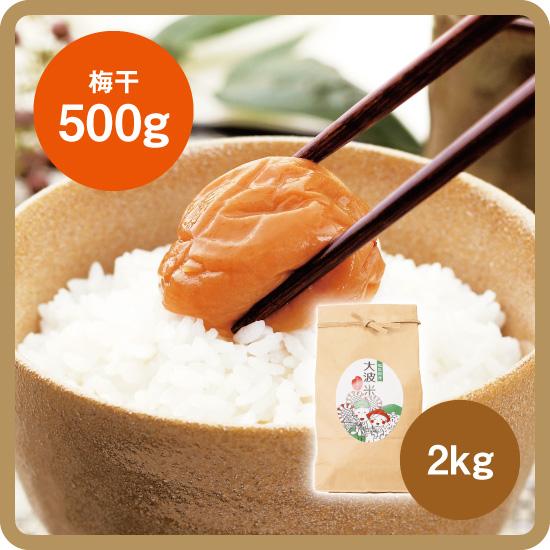 【送料無料・予約商品】大波米セット(大波米[新米]2kg+お好きな梅干500g)<発送日:12月下旬>/後払い限定(クレカ不可)
