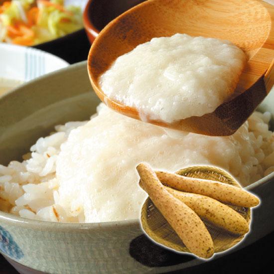 【送料無料・予約商品】北海道産 長芋 5kg(7本前後)<11月中旬より発送>