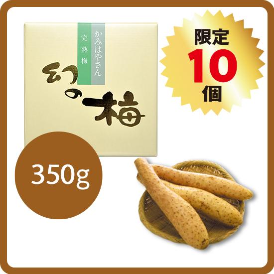 【送料無料・予約商品】長芋セット<1>(長芋5kg+幻の梅350g)<11月中旬より発送>